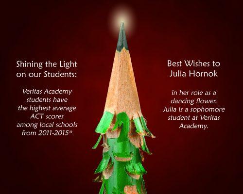 Veritas Academy Ads & Graphics
